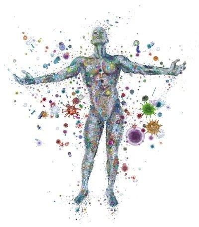 Bakterier-människa2.jpg