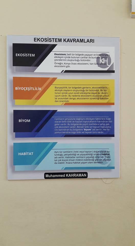 Mardin Kızıltepe ilcesi Ali Rıza Alparslan Anadolu Lisesi. - Esma Elik